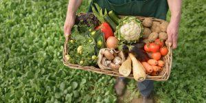 Утверждён Федеральный Закон об органической продукции