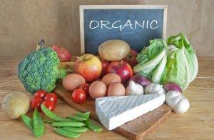 Для органической продукции утверждены первые государственные стандарты